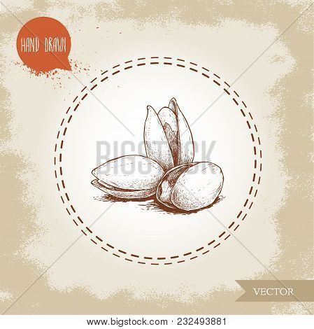 Pistachios Bunch Hand Drawn Sketch Style Illustration. Open Fried And Fresh Nuts. Vector Illustratio