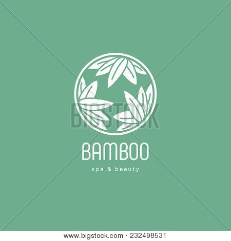 Bamboo Spa Salon Logo. Spa Emblem. Bamboo Leaves In A Circle With Letters. Green Background.