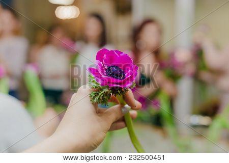 Purple Flower Workshop In Hand In Shops