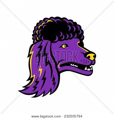 Mascot Icon Illustration Of Head Of A Poodle, Group Of Formal Dog Breeds, The Standard Poodle, Minia