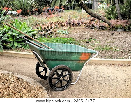 Wheel Barrow With Gardening Tools In It In A Botanical Garden.