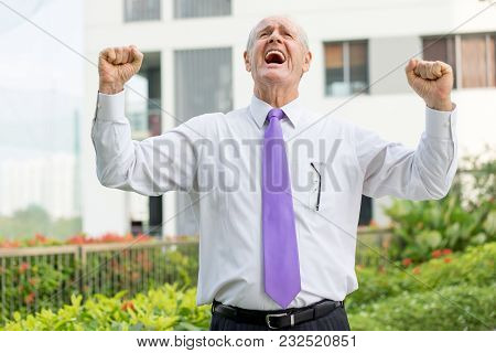 Happy Senior Man In Formalwear Raising Fists In Winning Gesture And Shouting. Excited Businessman Ce