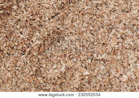 Close-up Of Spruce Sawdust And Chips Pile