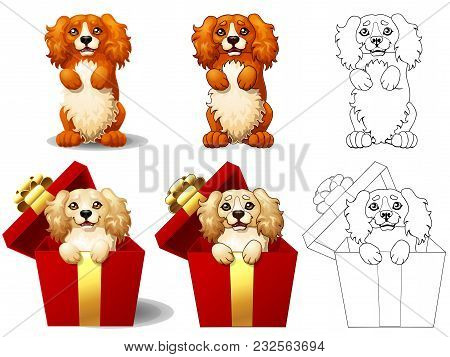 The Set Of Lovely Red And Yellow Dog Of Breed Cocker Spaniel Looks Out Of A Half-open Red Gift Box.