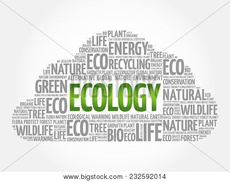 Ecology Word Cloud, Conceptual Green Ecology Background