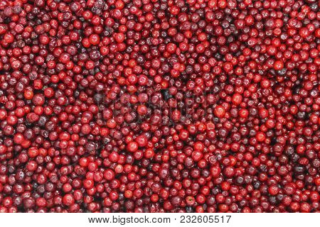 Frozen Red Berry Cranberries Close-up As Background