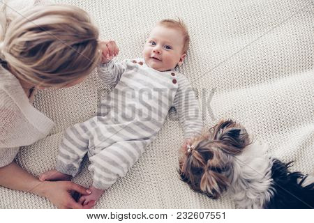 Home portrait of a 2 month old baby with mom and dog on the bed. Mother playing with the child and pet.