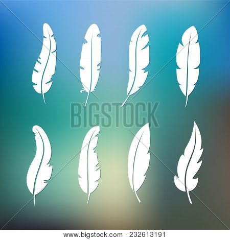 Different Set Feather Vector Icon Isolated On White Background. Collection For Writing Text And Desi