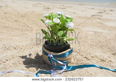 Tropical Island Sandy Beach With Daisy Plant In Pot And Ribbon Summer Vacation