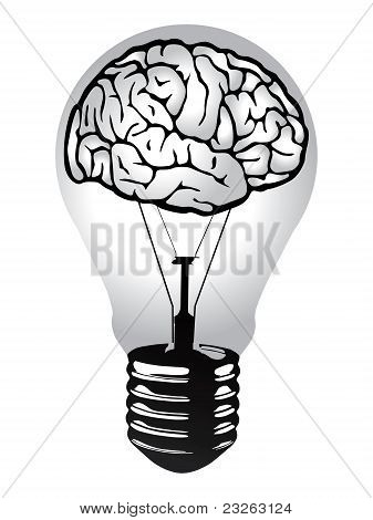 Brain light bulb vector