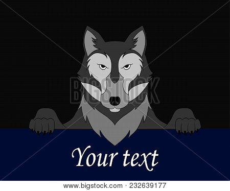 Wolf. The Image Of A Wolf Can Be Used To Supplement A Composition