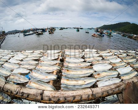 fish drying in the sun in Nam Du island, fishing boats in the background, Vietnam