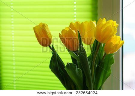 Yellow Tulips Stand At Window On Background Of Green Curtains.