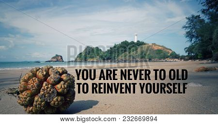 Motivational And Inspirational Quotes Quotes - You Are Never To Late To Reinvent Yourself. With Vint