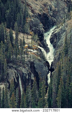 Forest and waterfall in Banff National Park, Canada