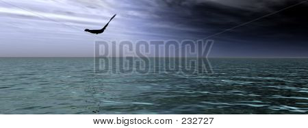 this is a bird over the sea. poster