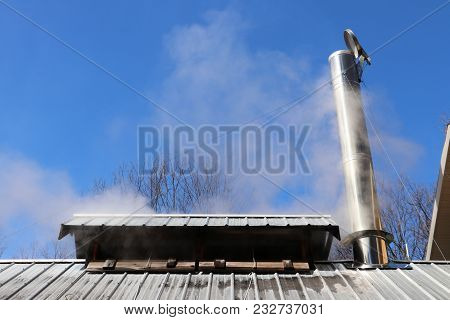 Steam Rising From Maple Syrup Production In Northern Michigan