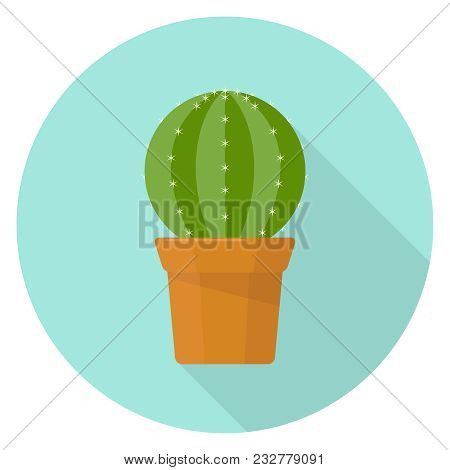 Cactus In A Pot, A Realistic Green Cactus With Spines. Cactus With Shadow. Flat Design, Vector Illus