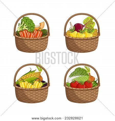 Fresh Organic Vegetable In Wicker Basket Set Isolated Illustration. Eco Farming, Vegetarian Nutritio