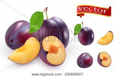Ripe Juicy Plums On A White Background Vector High Detail. Quality Realistic Vector Plum Collection.