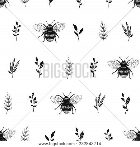 Hand Drawn Seamless Pattern With Leaves And Bees. Vector Nature Illustration In Minimalistic Style.