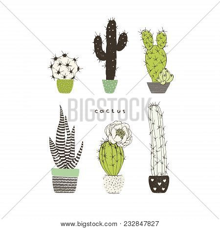 Poster With Different Cactuses And Succulents. Vector Doodle Collection.
