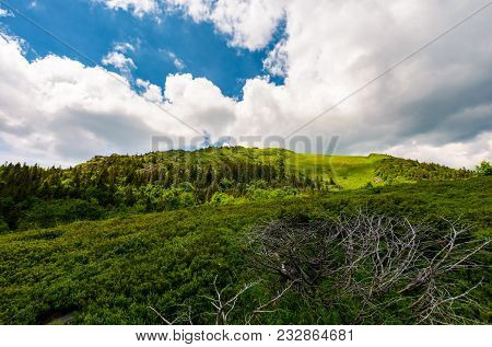 Beautiful Mountain Landscape In Summertime. Dramatic Scenery Before The Storm