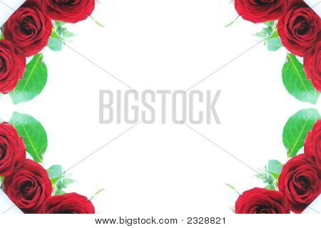 Beautiful Red Roses Adorn The Corner Borders 2