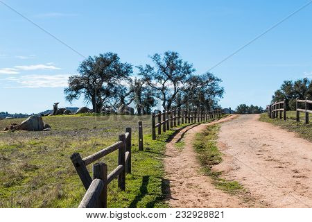 A Broken Wooden Fence Along A Dirt Road Leading To A Copse Of Trees At Ramona Grasslands Preserve In