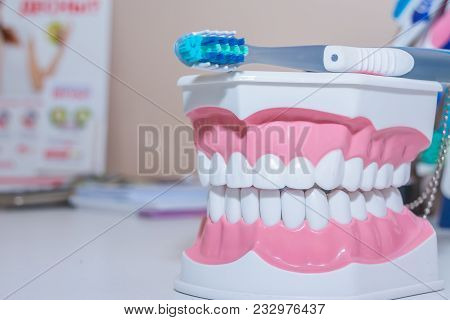 Teeth Model And Dental Tool On White Background.