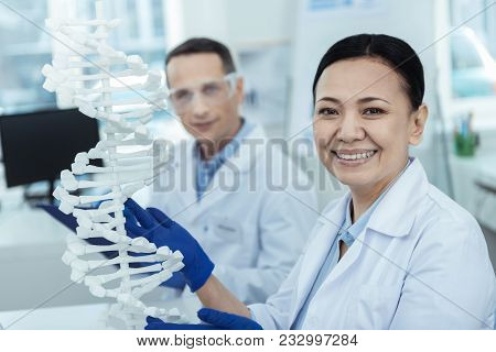 Research Monitoring. Positive Asian Female Researcher Holding A Dna Model While Working With Her Col