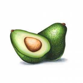 Avocado On A White Background. Sketch Done In Alcohol Markers. You Can Use For Greeting Cards, Poste