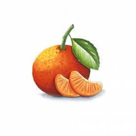 Tangerine On A White Background. Sketch Done In Alcohol Markets. You Can Use For Greeting Cards, Pos