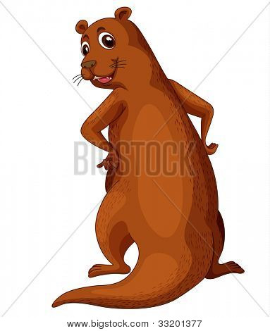 Illustration of a comical otter - EPS VECTOR format also available in my portfolio.
