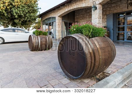 Rosh Haayin, Israel, October 31, 2019 : Wine Barrels With Flowers Growing In Them Near The Entrance