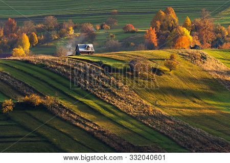 Agriculture, Autumn, Beautiful, Beauty, Cherry, Color, Colored, Country, Countryside, Environment, F