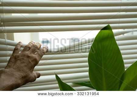 Watch The Street Through The Blinds. Peep Through The Curtain. The Old Mans Fingers Opened The Gap T