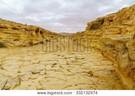 Landscape Of A Wadi (desert Valley) In Ein Avdat National Park, The Negev Desert, Southern Israel