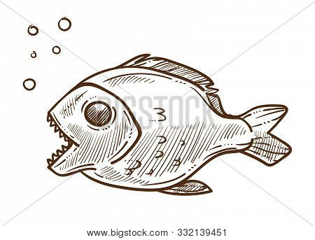 Piranha Fish Side View Hand Drawn Sketch Illustration