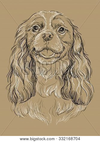 Cavalier King Charles Spaniel Vector Hand Drawing Illustration In Black And White Colors Isolated On