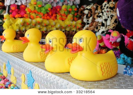 Ducks at a carnival game