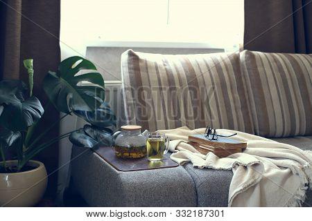 Interior Living Room Sofa Herbal Tea Plaid Book