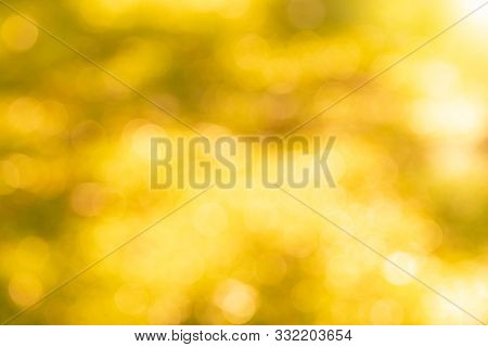 Bokeh Backgrounds Color Orange Gold ,orange And White Blur Defocused Nature Blurred