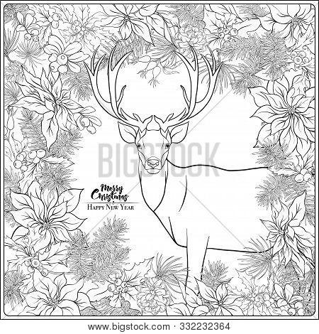 Christmas Wreath Of Spruce, Pine, Poinsettia, Dog Rose, Cowberry, Cranberry, Mistletoe, Fir, Winter
