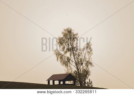 Lonely Gazebo On The Hill. Summerhouse Under Tree Standing Alone In The Field. Solitude Concept