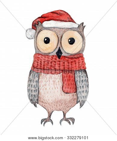 Cute Watercolor Brown Owl In Knitted Red Scarf And Christmas Hat. Childish Cartoon New Year Illustra
