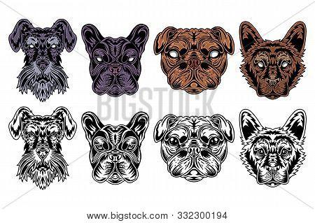 Dog Face Miniature Schnauzer, French Bulldog, Pug, Shepherd Vintage Retro Style. Vector Illustration