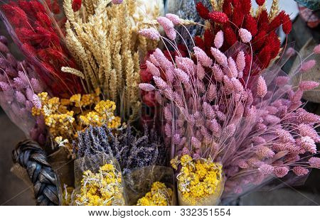 Variety Of Natural Plant Dried Flowers Home Decorative Eternal Flower Bouquets Of Floral Grass Multi