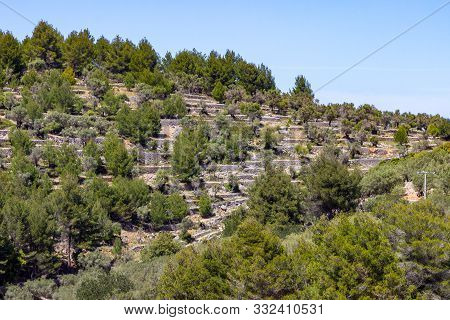 View At Landscape Between Gorg Blau And Soller On Balearic Island Mallorca, Spain
