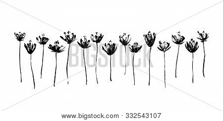 Set Of Hand Drawn Abstract Modern Flowers. Grunge Style Ink Painted Elements For Design. Black Isola